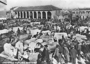 MERCATO BESTIAME 1938